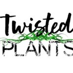 Twisted Plants