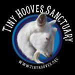 Tiny Hooves Sanctuary